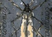 GORODINE-N°27-Scarabée-1-TM-sur-papier-30x40