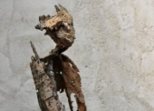 ALLEGRE N°60 Homme fossile contemplation  Métal
